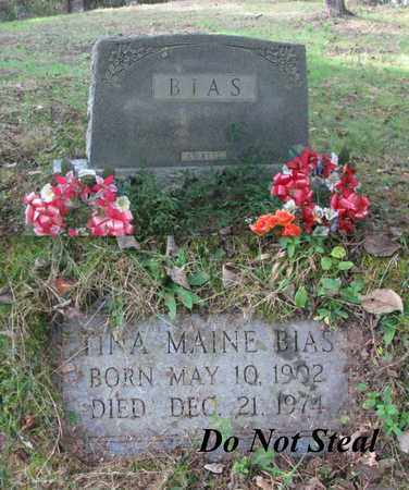 DENT BIAS, TINA MARIE - Boone County, West Virginia | TINA MARIE DENT BIAS - West Virginia Gravestone Photos