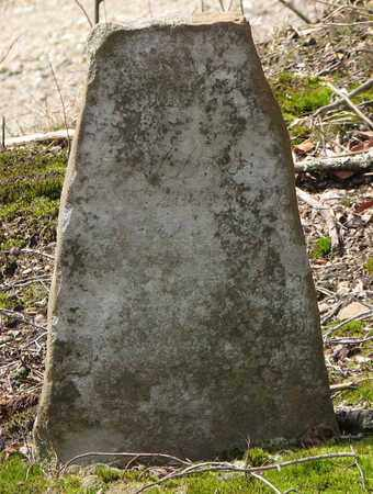BOOK, SALUDA - Boone County, West Virginia | SALUDA BOOK - West Virginia Gravestone Photos