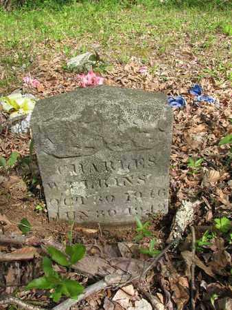 ELKINS, CHARLES - Boone County, West Virginia | CHARLES ELKINS - West Virginia Gravestone Photos