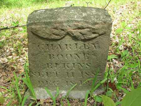 ELKINS, CHARLEY BOONE - Boone County, West Virginia | CHARLEY BOONE ELKINS - West Virginia Gravestone Photos