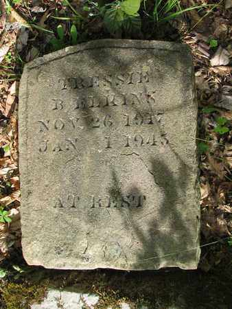 ELKINS, TESSIE B - Boone County, West Virginia | TESSIE B ELKINS - West Virginia Gravestone Photos