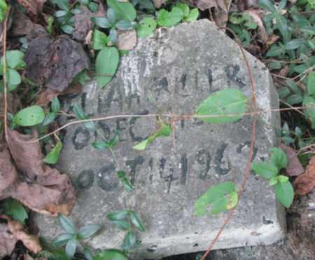 ELLIS MILLER, DELILAH - Boone County, West Virginia | DELILAH ELLIS MILLER - West Virginia Gravestone Photos