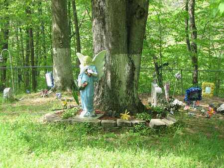 THOMPSON, MESCAL FAYE - Boone County, West Virginia | MESCAL FAYE THOMPSON - West Virginia Gravestone Photos