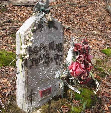 MCNEELY, EMIL - Boone County, West Virginia   EMIL MCNEELY - West Virginia Gravestone Photos