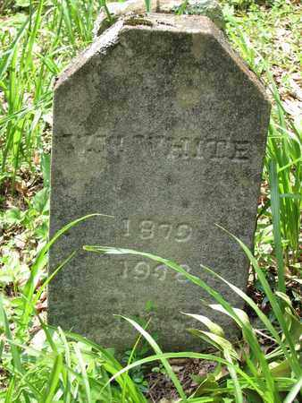 WHITE, WILLARD W. - Boone County, West Virginia | WILLARD W. WHITE - West Virginia Gravestone Photos