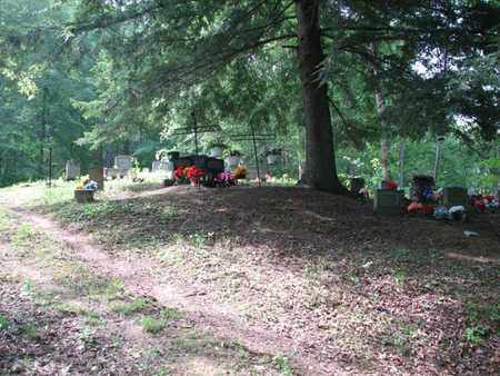WORKMAN, JANE - Boone County, West Virginia | JANE WORKMAN - West Virginia Gravestone Photos