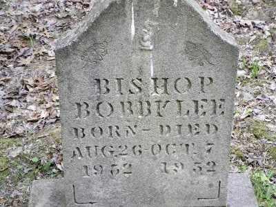 BISHOP, BOBBY LEE - Clay County, West Virginia | BOBBY LEE BISHOP - West Virginia Gravestone Photos