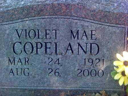 COPELAND, VIOLET MAE - Fayette County, West Virginia | VIOLET MAE COPELAND - West Virginia Gravestone Photos
