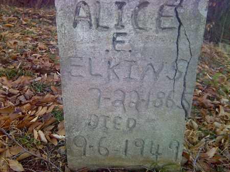 ELKINS, ALICE E - Fayette County, West Virginia | ALICE E ELKINS - West Virginia Gravestone Photos