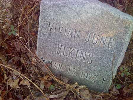 ELKINS, VIVIAN - Fayette County, West Virginia   VIVIAN ELKINS - West Virginia Gravestone Photos