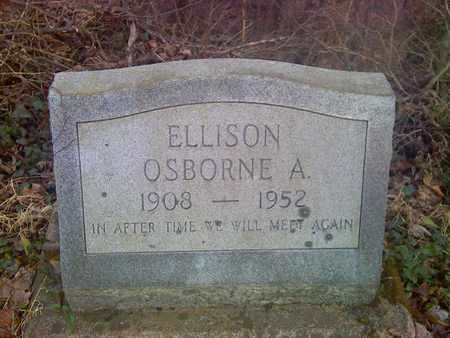 ELLISON, OSBORNE - Fayette County, West Virginia | OSBORNE ELLISON - West Virginia Gravestone Photos