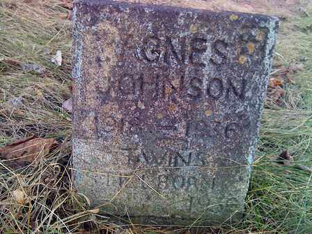 JOHNSON, AGNES - Fayette County, West Virginia | AGNES JOHNSON - West Virginia Gravestone Photos