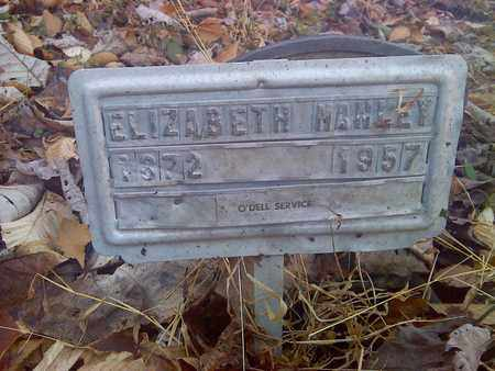 MANLEY, ELIZABETH - Fayette County, West Virginia | ELIZABETH MANLEY - West Virginia Gravestone Photos