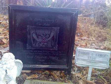 MANLEY, SARAH ELIZABETH - Fayette County, West Virginia | SARAH ELIZABETH MANLEY - West Virginia Gravestone Photos