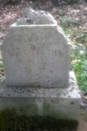 MCKINNEY, ELVIN - Fayette County, West Virginia | ELVIN MCKINNEY - West Virginia Gravestone Photos