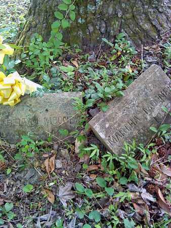 MOONEY, SHELTON - Fayette County, West Virginia | SHELTON MOONEY - West Virginia Gravestone Photos