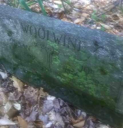 WOOLWINE, JOE - Fayette County, West Virginia | JOE WOOLWINE - West Virginia Gravestone Photos