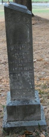 HERNDON, WILLIAM H - Greenbrier County, West Virginia | WILLIAM H HERNDON - West Virginia Gravestone Photos