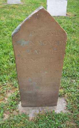 MONROE, DOC, T JOHN - Hampshire County, West Virginia   DOC, T JOHN MONROE - West Virginia Gravestone Photos