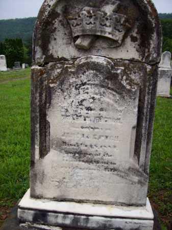 PUGH, ANN ELIZABETH - Hampshire County, West Virginia | ANN ELIZABETH PUGH - West Virginia Gravestone Photos