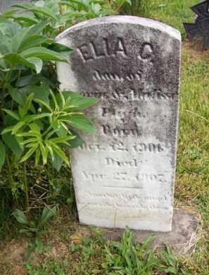 PUGH, ELLA C. - Hampshire County, West Virginia | ELLA C. PUGH - West Virginia Gravestone Photos