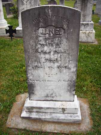 PUGH, JANE - Hampshire County, West Virginia | JANE PUGH - West Virginia Gravestone Photos