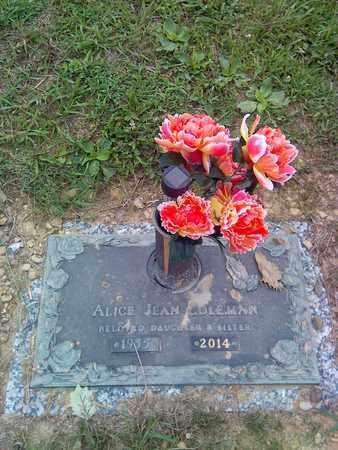 COLEMAN, ALICE JEAN - Kanawha County, West Virginia | ALICE JEAN COLEMAN - West Virginia Gravestone Photos