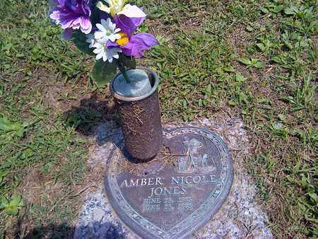JONES, AMBER - Kanawha County, West Virginia | AMBER JONES - West Virginia Gravestone Photos