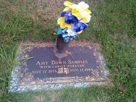 SAMPLES, AMY - Kanawha County, West Virginia | AMY SAMPLES - West Virginia Gravestone Photos
