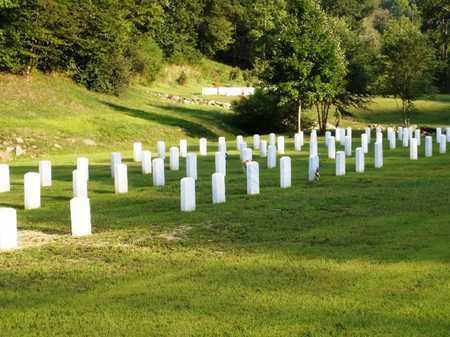 VETERANS, MANY - Kanawha County, West Virginia | MANY VETERANS - West Virginia Gravestone Photos