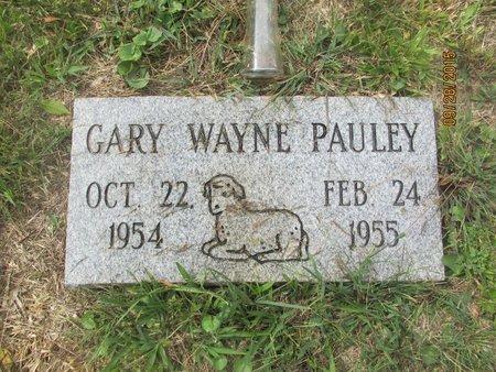 PAULEY, GARY WAYNE - Lincoln County, West Virginia | GARY WAYNE PAULEY - West Virginia Gravestone Photos