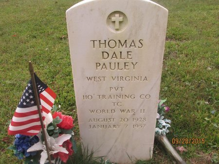 PAULEY, THOMAS DALE - Lincoln County, West Virginia | THOMAS DALE PAULEY - West Virginia Gravestone Photos