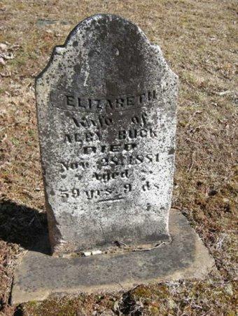 BUCK, ELIZABEATH  - Mason County, West Virginia | ELIZABEATH  BUCK - West Virginia Gravestone Photos