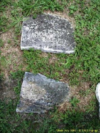 KNAPP HARRISON, PRISCILLA  - Mason County, West Virginia | PRISCILLA  KNAPP HARRISON - West Virginia Gravestone Photos