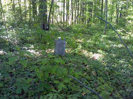 BAILY, AUGUSTUS - Mercer County, West Virginia | AUGUSTUS BAILY - West Virginia Gravestone Photos