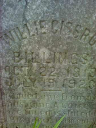 BILLINGS, WILLIE CISSRO - Mercer County, West Virginia | WILLIE CISSRO BILLINGS - West Virginia Gravestone Photos