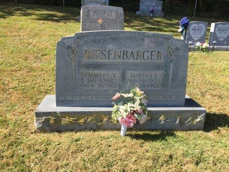 PITSENBARGER, CHARLES WELLINGTON - Pendleton County, West Virginia | CHARLES WELLINGTON PITSENBARGER - West Virginia Gravestone Photos
