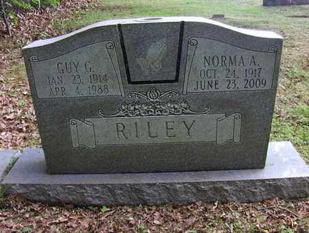 RILEY, GUY GEORGE - Preston County, West Virginia | GUY GEORGE RILEY - West Virginia Gravestone Photos