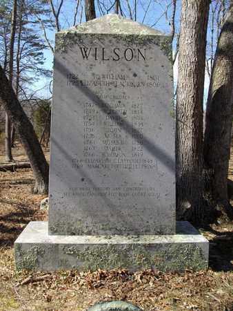 WILSON, ELIZABETH - Randolph County, West Virginia | ELIZABETH WILSON - West Virginia Gravestone Photos