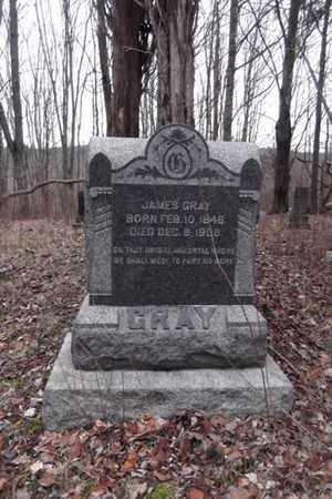 GRAY, JAMES - Tyler County, West Virginia   JAMES GRAY - West Virginia Gravestone Photos