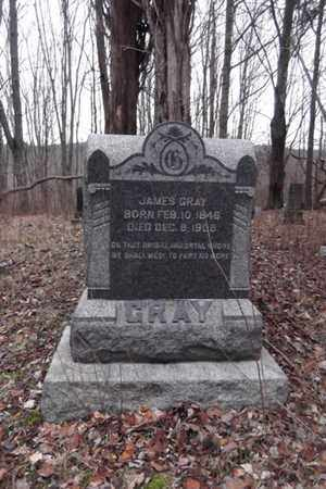 GRAY, JAMES - Tyler County, West Virginia | JAMES GRAY - West Virginia Gravestone Photos