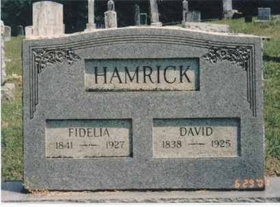 DODRILL HAMRICK, FIDELIA S - Webster County, West Virginia | FIDELIA S DODRILL HAMRICK - West Virginia Gravestone Photos