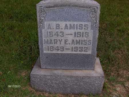 TRUMAN AMISS, MARY - Wood County, West Virginia | MARY TRUMAN AMISS - West Virginia Gravestone Photos