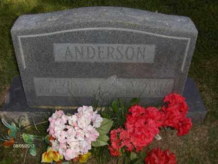 ANDERSON, SARAH J - Wood County, West Virginia | SARAH J ANDERSON - West Virginia Gravestone Photos