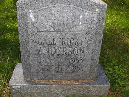 ANDERSON, GALE - Wood County, West Virginia | GALE ANDERSON - West Virginia Gravestone Photos