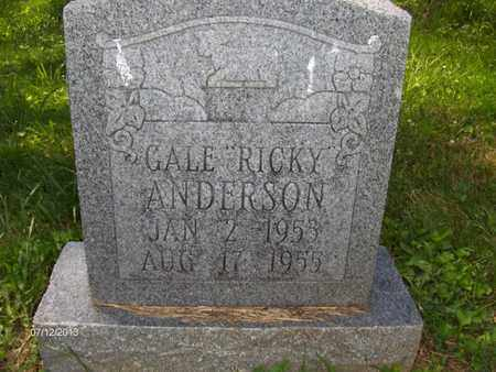 "ANDERSON, GALE ""RICKY"" - Wood County, West Virginia 