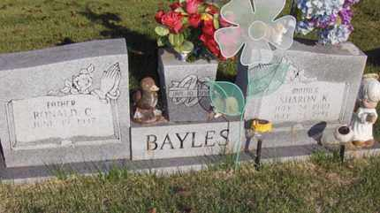 BAYLES, SHARON KAY - Wood County, West Virginia | SHARON KAY BAYLES - West Virginia Gravestone Photos