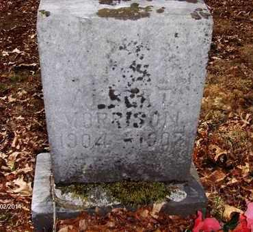 MORRISON, ALBERT - Wood County, West Virginia   ALBERT MORRISON - West Virginia Gravestone Photos